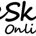 PRESKIN - 2 Manchons de Compression SportComp Bleu Chaussettes sans Pied pour Le Sport et Le Travail, Bas compressifs Mollets Jambes, Hommes et Femmes pour Running, Cycling, Triathlon, Crossfit de la marque PRESKIN image 3 produit