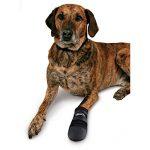Trixie Bottes de Protection Walker Care Taille M 2 Pièces pour Chien (Border Collie) de la marque Trixie image 4 produit