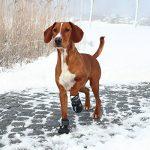 Trixie Walker Active - Bottes de protection pour chien de la marque Trixie image 2 produit